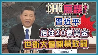 WHA召開台灣未獲邀請 多國力挺抗議