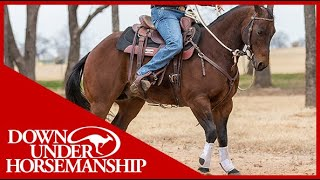 Clinton Anderson: How to Get Your Horse to Go Forward - Downunder Horsemanship