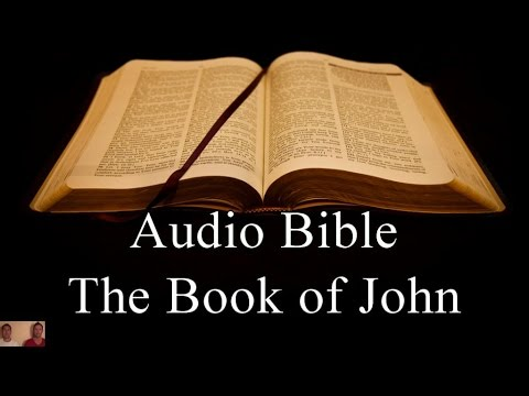 The Book of John – NIV Audio Holy Bible – High Quality and Best Speed – Book 43