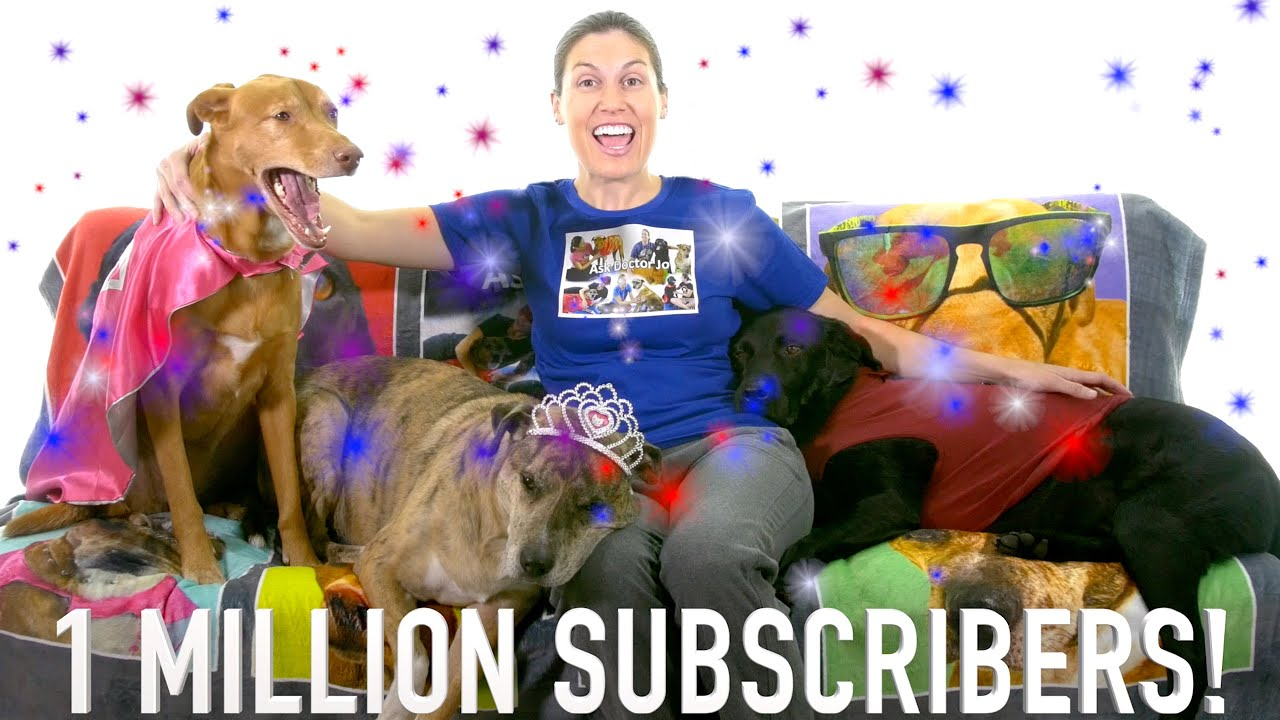 1 MILLION Subscribers Celebration!