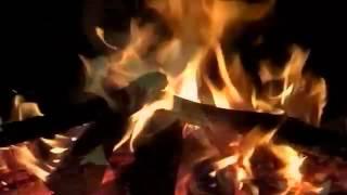 """【癒し系】自然音 夜通し焚き火 """"Bonfire all night long """""""