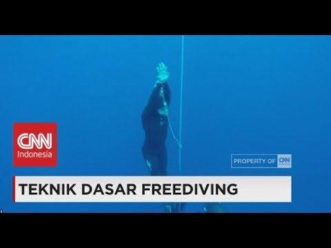 Teknik Dasar Freediving
