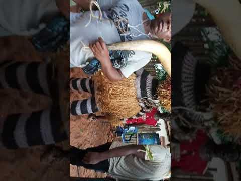 Iriji ohu 2019 Akwari Eke(5)
