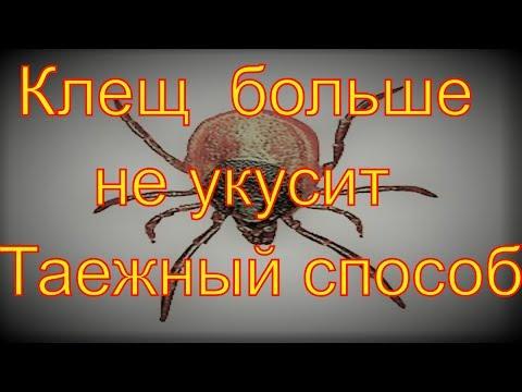 https://youtu.be/jrk0Qly99_U