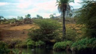 1983 Kenya