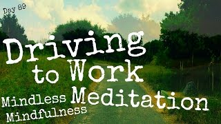 Driving to Work Meditation (Day 89)