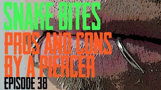 Snake Bite Piercings Pros & Cons By A Piercer EP 38
