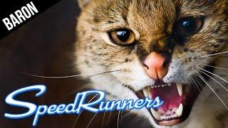 Speedrunners!  Bad Kitty, Very Bad Kitty!!!  (SpeedRunners Multiplayer Gameplay)