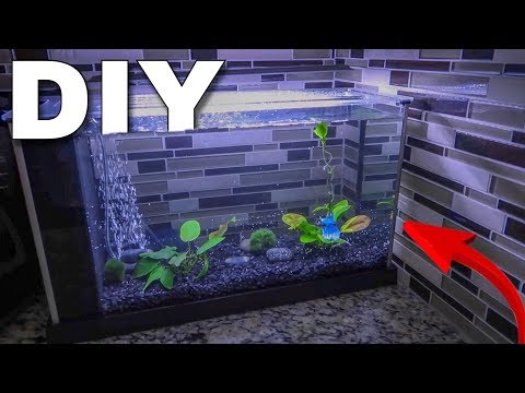 The NEW BETTA FISH AQUARIUM...