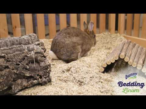 Bunny Litter Bed O'Linum