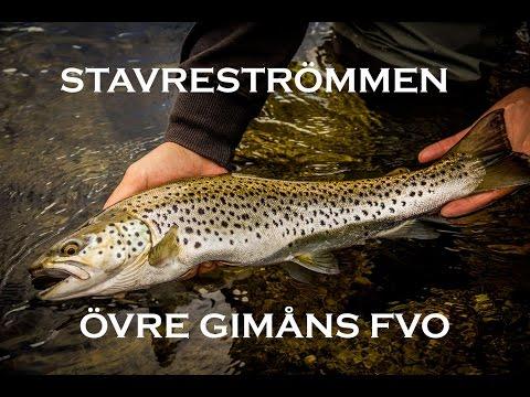 River Stavreströmmen in Sweden!