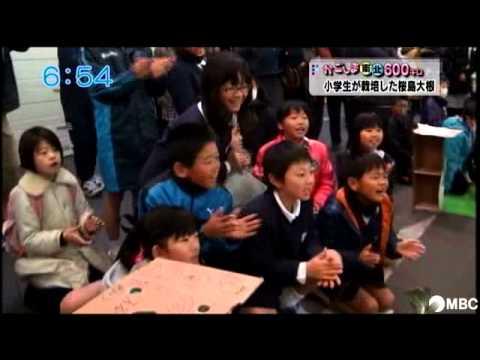 小学生が栽培した桜島大根(2014年1月30日放送)