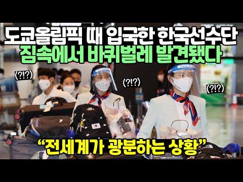 [유튜브] 도쿄올림픽 때 입국한 한국선수단 짐속에서 바퀴벌레 발견됐다