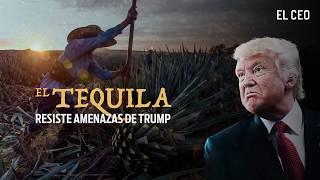 El tequila resiste amenazas de Trump
