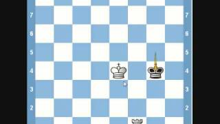Chess Endgame- King and Rook