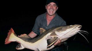 Cyril est au Guyana, en Amazonie. Il a entendu parler d'un poisson mythique, le redtail catfish, ou poisson-chat à queue rouge, localement appelé le Pirarara. Ce siluriforme est connu pour sa puissance et son agressivité, autant vous dire qu'en capturer un dans cette jungle ne s'annonce pas gagné d'avance...   Pour ne rien louper de nos prochaines vidéos suivez-nous sur nos réseaux :   ► Site web: http://www.cyrilchauquet.com/ ► Instagram: http://www.instagram.com/mordudelapeche ► Facebook: https://www.facebook.com/Mordudelapeche/