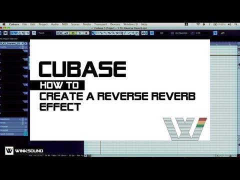 Cubase: How To Create a Reverse Reverb Effect   WinkSound