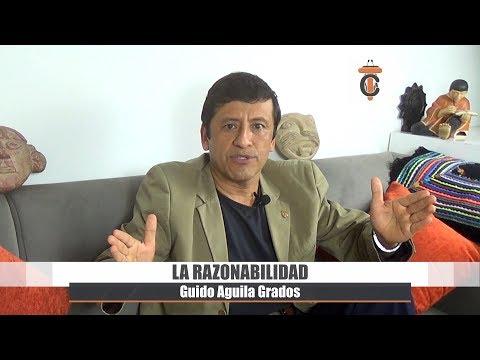 La Razonabilidad - Tribuna Constitucional 50 - Guido Aguila Grados