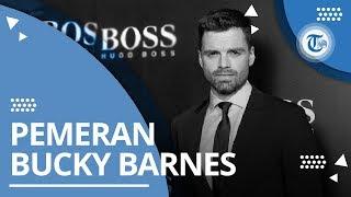 Profil Sebastian Stan - Pemeran Bucky Barnes di Marvel Cinematic Universe