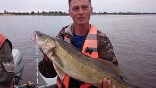 Все о рыбалке на северной двине