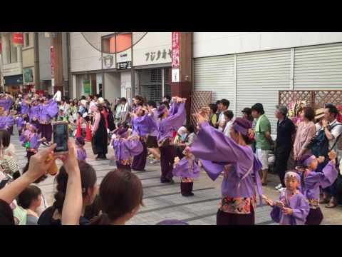 学校法人やまもも学園桜井幼稚園 第63回よさこい祭り(はりまや橋競演場)