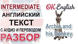 Archie and his Donkey - английский текст среднего уровня - разбор, перевод, английская грамматика