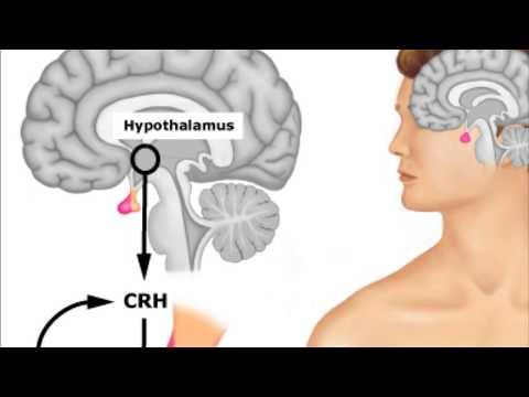Les vitamines et comme de ceux-ci utiliser au psoriasis