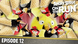 Angry Birds On The Run   Brain Freeze   S1 Ep12