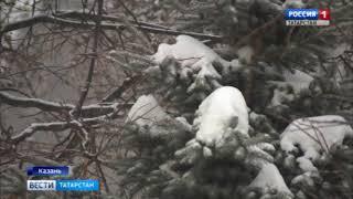 В Татарстане ожидается сильный снег, метели и гололед