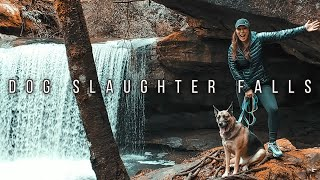 Dog Slaughter Falls | Day Hike | Daniel Boone National Forest