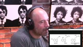 Joe Rogan   Mushrooms Vs. DMT