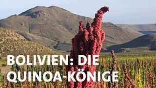 Superfood Quinoa: Traditioneller Anbau in Bolivien bedroht