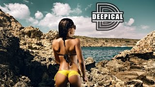 BEST TECH HOUSE CLUB MIX 2017 🔥 Deep House Music 2017