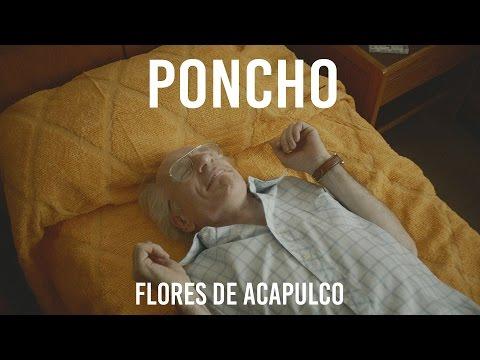 Flores De Acapulco