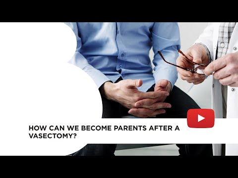 Resultados de la búsqueda  How can we become parents after a vasectomy?