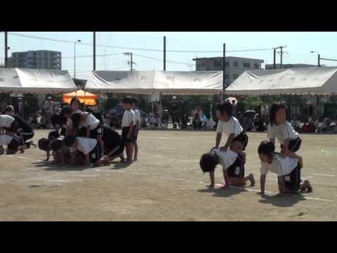 みとま保育園運動会-2011-四島あげは&じんのすけ  福岡の
