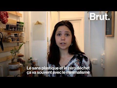FrançaisA2 - Décembre-Compréhension orale écologie