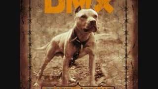 DMX - Fuck Y'all