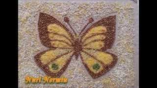 Картинки из крупы. Бабочка.