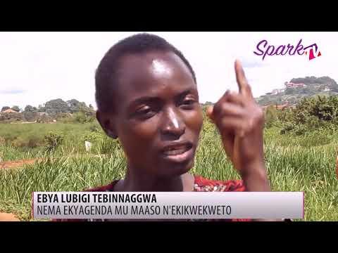 Ebya Lubigi tebinaggwa