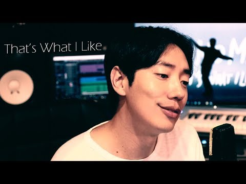 Bruno Mars - That's What I Like (Acapella by Napkins) 넵킨스