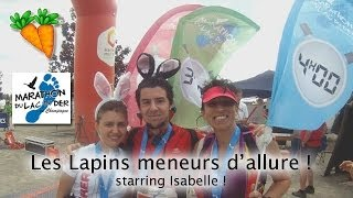 preview picture of video 'Les Lapins mènent l'allure au Lac du Der !'