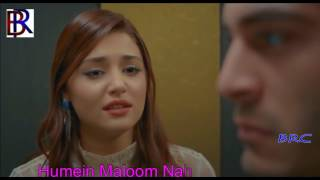 Hum Royenge Itna Humein Maloom Na Tha   LYRICAL Ft     Hayat And Murat    Mp3 Song High Quality Mp3