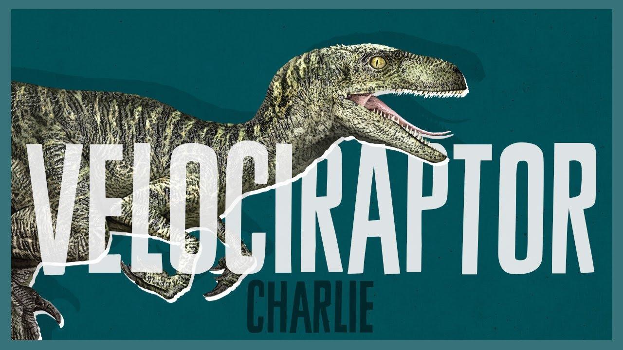 『ジュラシック・ワールド』 最強恐竜トレーニング完了(チャーリーver)