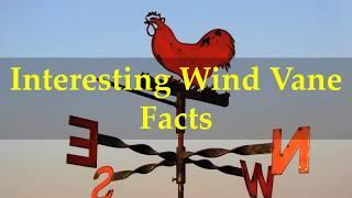 Interesting Wind Vane Facts