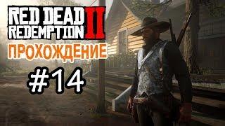 Прохождение Red Dead Redemption 2 #14