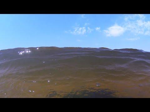 Строгинская пойма залив затон Лето жара Щукинский полуостров коса Московский релакс 2016