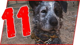 LAYING IN A POOL OF BLOOD NEXT TO MY DOG...YOU WON'T BELIEVE WHAT HAPPENS NEXT! - Far Cry 5 Ep.11