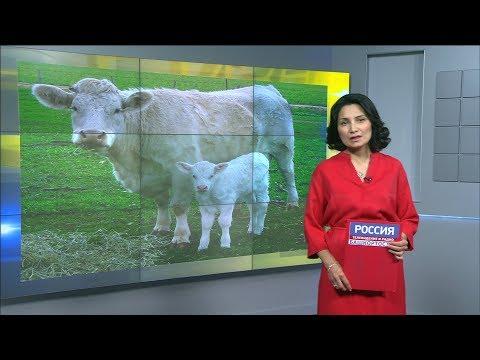 """""""Агробизнес"""" 12.05.2018"""