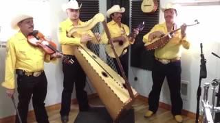 Tu Delirio - Los Jilgueros De Michoacán